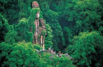 杨柳青森林公园