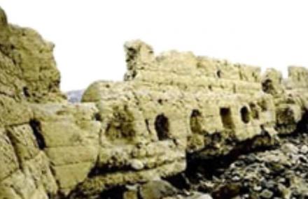农安古塔遗址