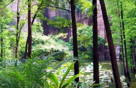 莲花自然保护区